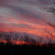 There is a special energy in a deep pink and blue sunset much like with reiki, maybe that's why people love reiki and sunsets