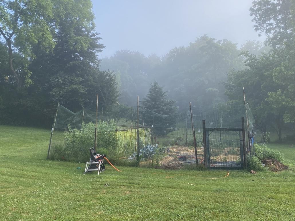 garden practices reveal your psyche